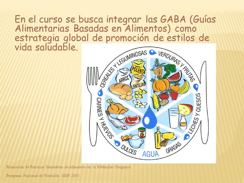 En el curso se busca integrar las GABA (Guías Alimentarias Basadas en Alimentos) como estrategia global de promoción de estilos de vida saludable. Pro