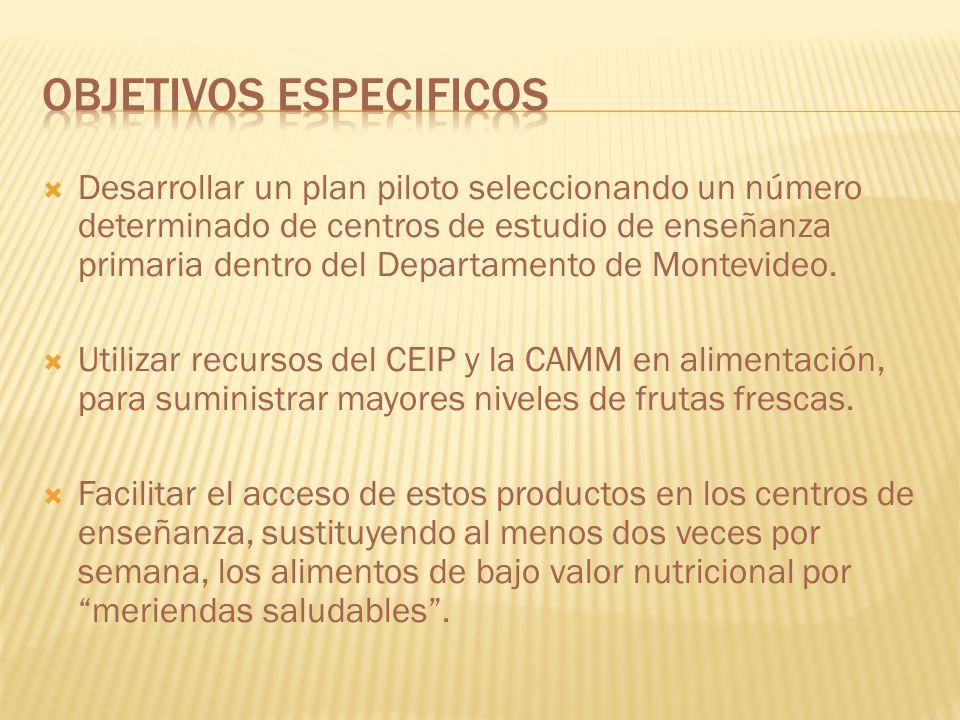 Desarrollar un plan piloto seleccionando un número determinado de centros de estudio de enseñanza primaria dentro del Departamento de Montevideo. Util