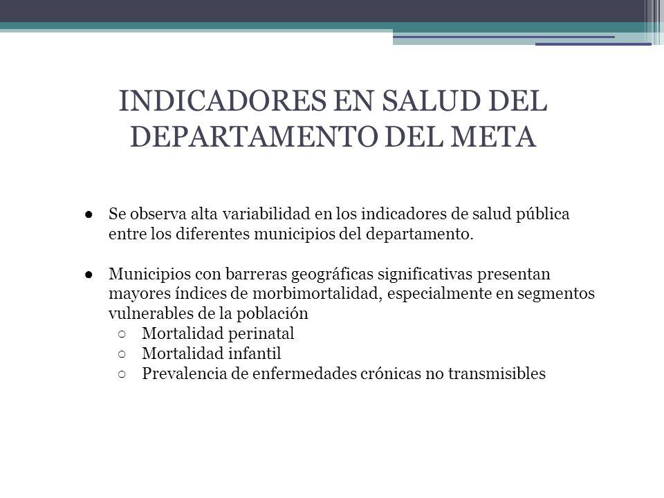 INDICADORES EN SALUD DEL DEPARTAMENTO DEL META Se observa alta variabilidad en los indicadores de salud pública entre los diferentes municipios del departamento.