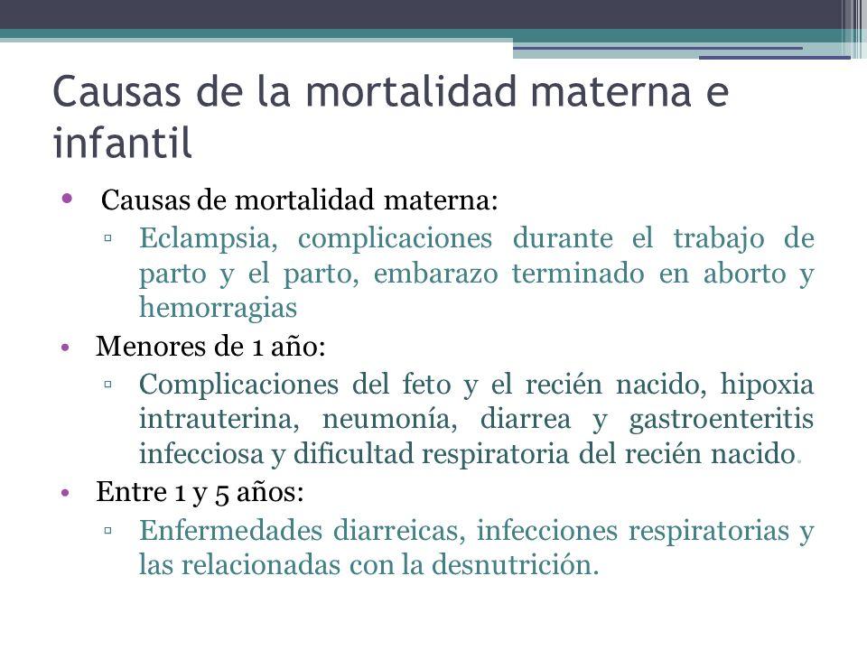 Causas de la mortalidad materna e infantil Causas de mortalidad materna: Eclampsia, complicaciones durante el trabajo de parto y el parto, embarazo te