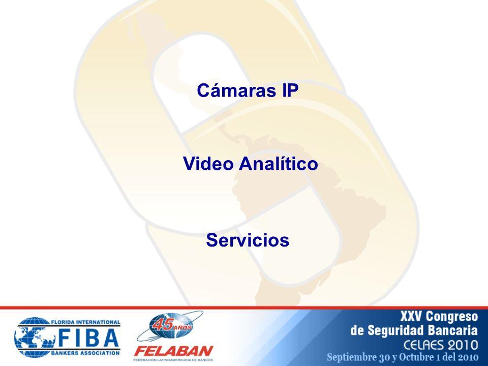 Video Analítico Cámaras IP Servicios