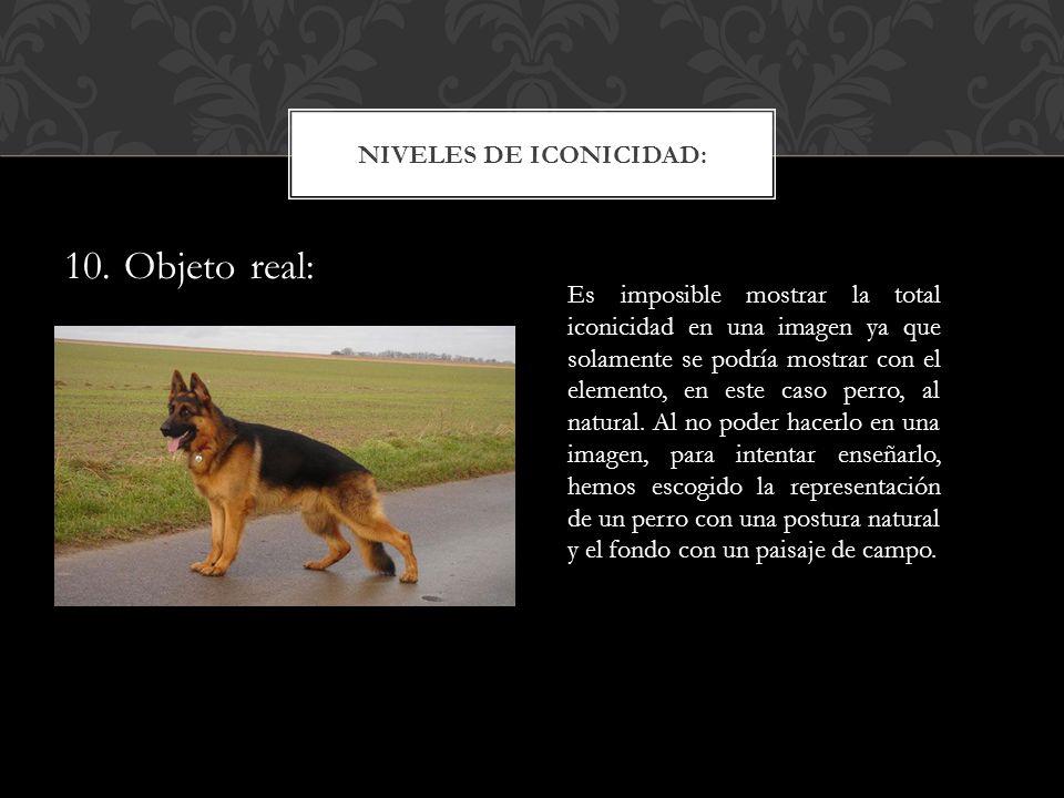 10. Objeto real: NIVELES DE ICONICIDAD: Es imposible mostrar la total iconicidad en una imagen ya que solamente se podría mostrar con el elemento, en