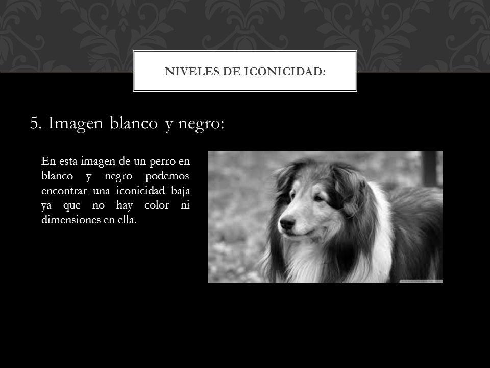 5. Imagen blanco y negro: NIVELES DE ICONICIDAD: En esta imagen de un perro en blanco y negro podemos encontrar una iconicidad baja ya que no hay colo