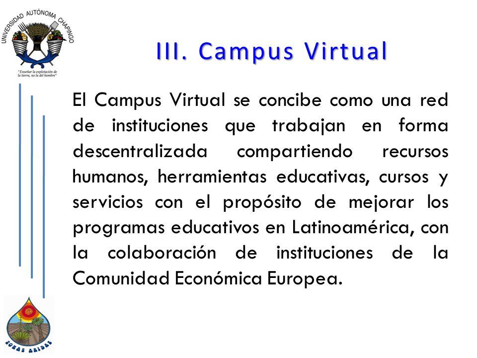III. Campus Virtual El Campus Virtual se concibe como una red de instituciones que trabajan en forma descentralizada compartiendo recursos humanos, he