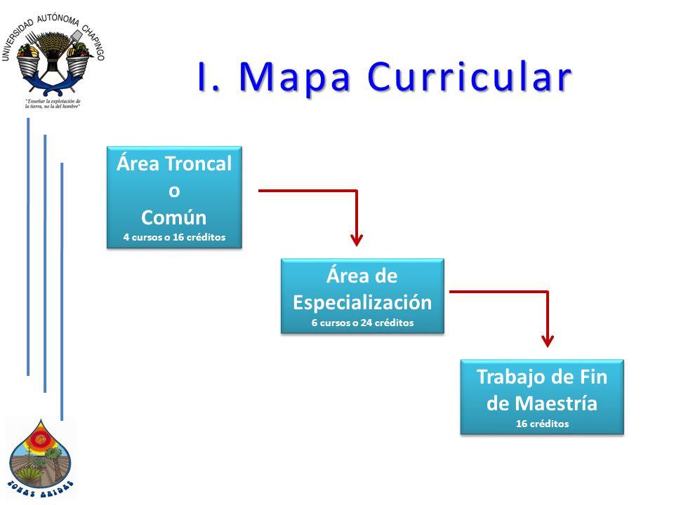 I. Mapa Curricular Área Troncal o Común 4 cursos o 16 créditos Área Troncal o Común 4 cursos o 16 créditos Área de Especialización 6 cursos o 24 crédi