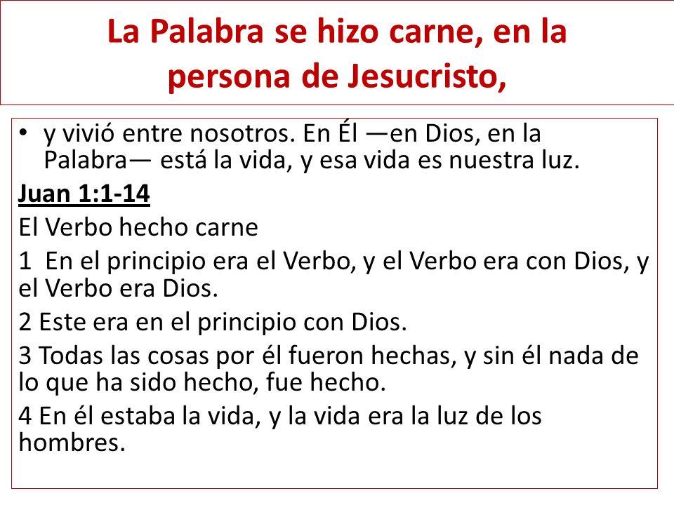 La Palabra se hizo carne, en la persona de Jesucristo, y vivió entre nosotros. En Él en Dios, en la Palabra está la vida, y esa vida es nuestra luz. J
