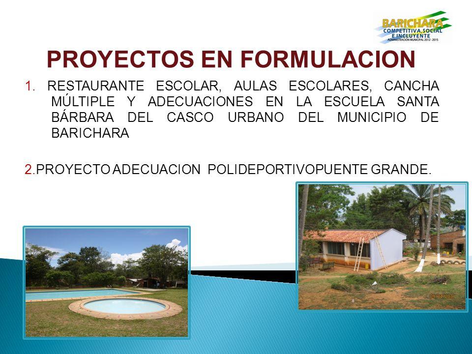 PROYECTOS EN FORMULACION 1.