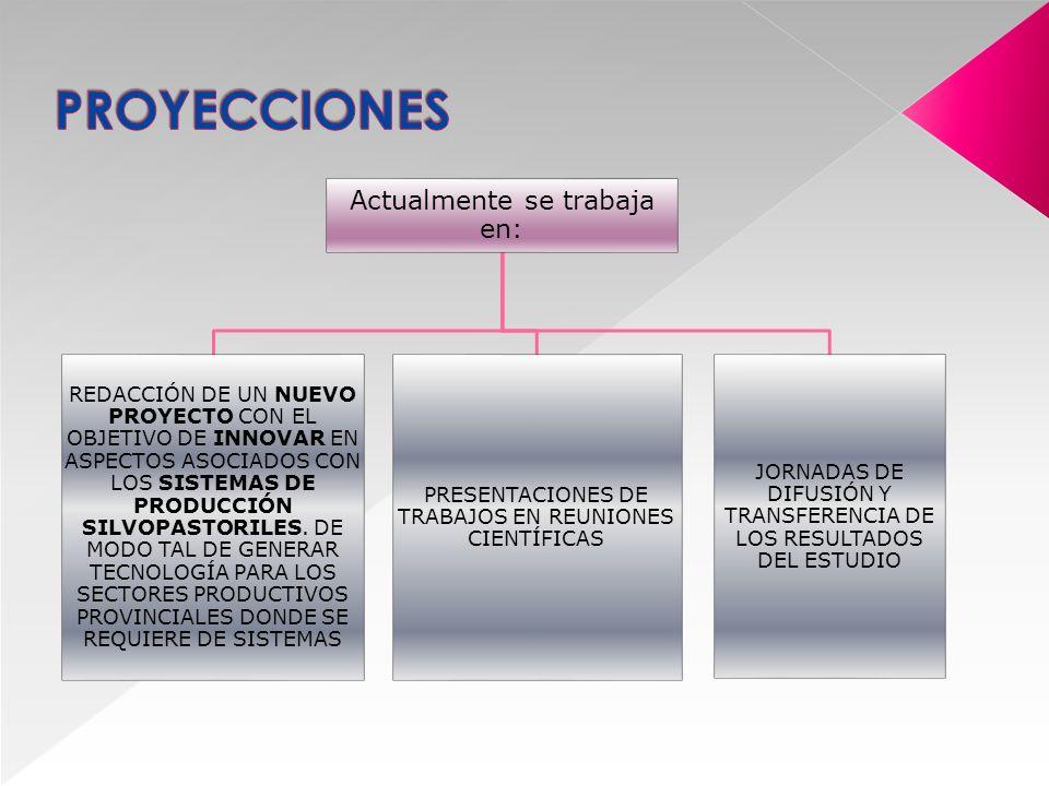 IDENTIFICACIÓN Y SELECCIÓN DE LA IDEA PROYECTO FORMULACIÓN ADMINISTRACIÓN DE LOS RECURSOS FINANCIEROS GESTIÓN DEL PROYECTO (RENDICIÓN DE CUENTAS –PRESENTACIÓN DE INFOMES TÉCNICO)