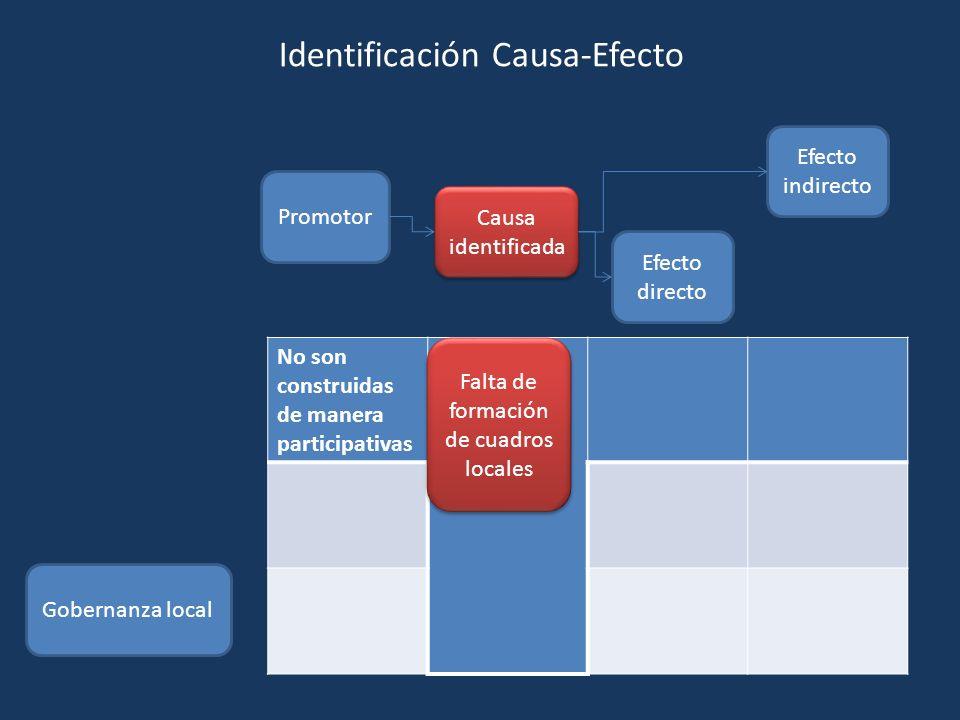 Promotor Causa identificada Efecto directo Efecto indirecto Gobernanza local No son construidas de manera participativas Falta de formación de cuadros