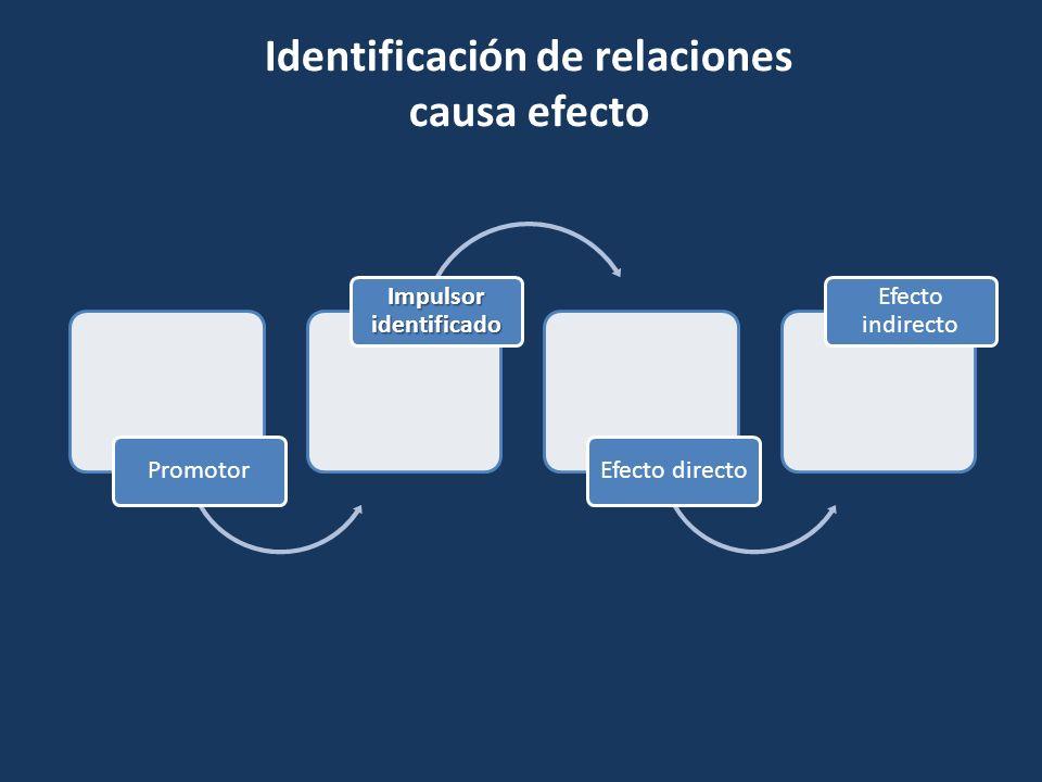 Promotor Impulsor identificado Efecto directo Efecto indirecto Identificación de relaciones causa efecto