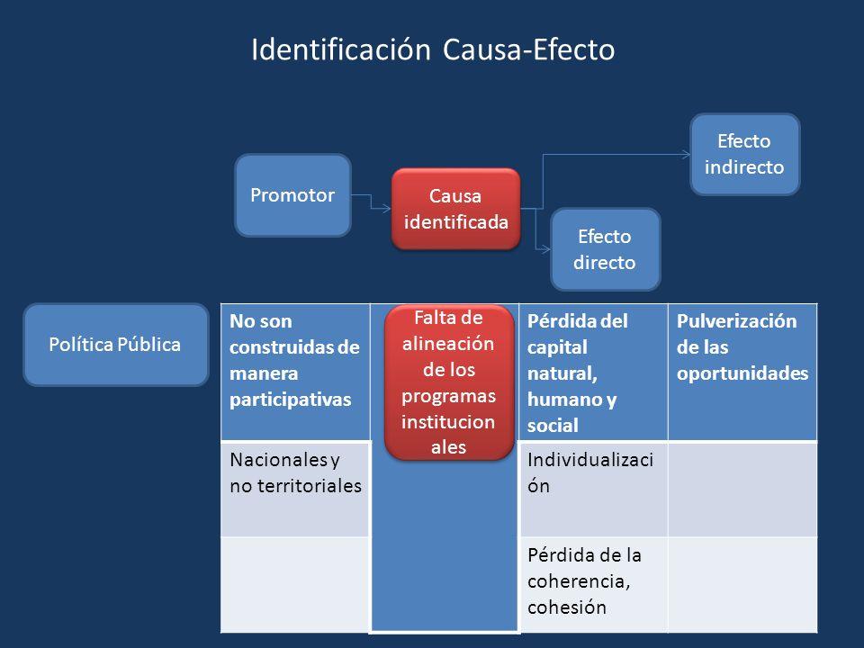 Promotor Causa identificada Efecto directo Efecto indirecto Política Pública No son construidas de manera participativas Pérdida del capital natural,