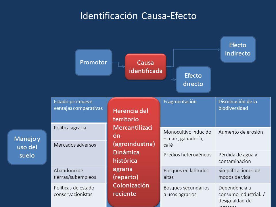 Promotor Causa identificada Efecto directo Efecto indirecto Manejo y uso del suelo Estado promueve ventajas comparativas FragmentaciónDisminución de l