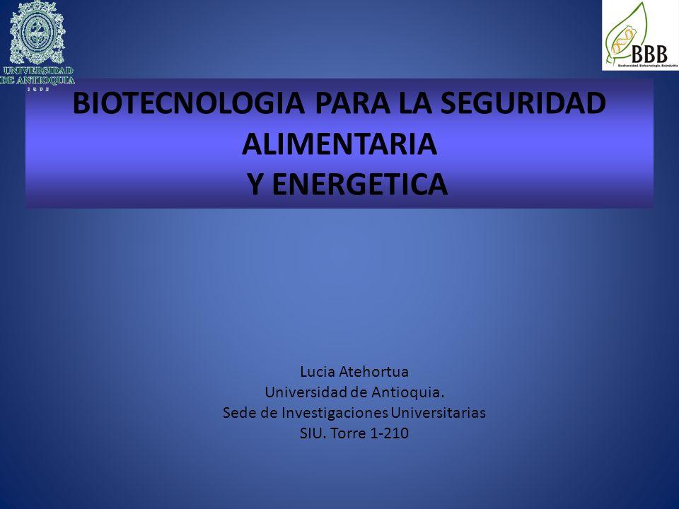 BIOTECNOLOGIA PARA LA SEGURIDAD ALIMENTARIA Y ENERGETICA Lucia Atehortua Universidad de Antioquia. Sede de Investigaciones Universitarias SIU. Torre 1