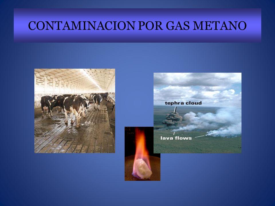 CONTAMINACION POR GAS METANO