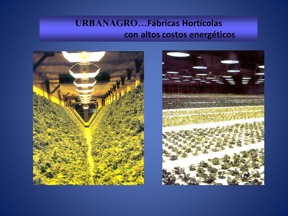 URBANAGRO… Fábricas Hortícolas con altos costos energéticos