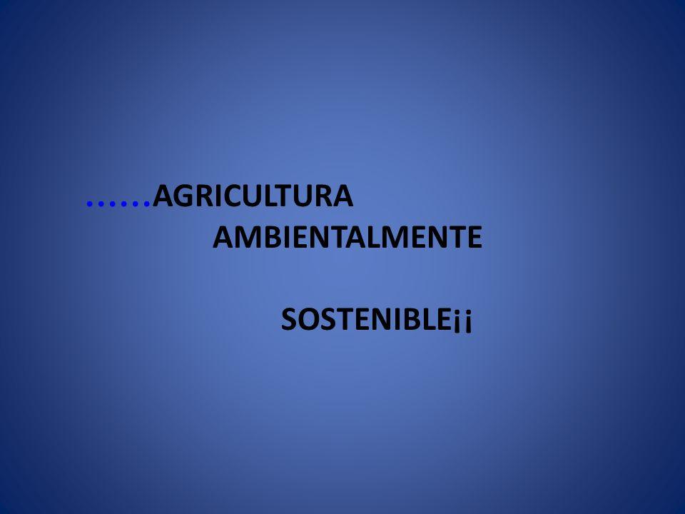 …… AGRICULTURA AMBIENTALMENTE SOSTENIBLE¡¡