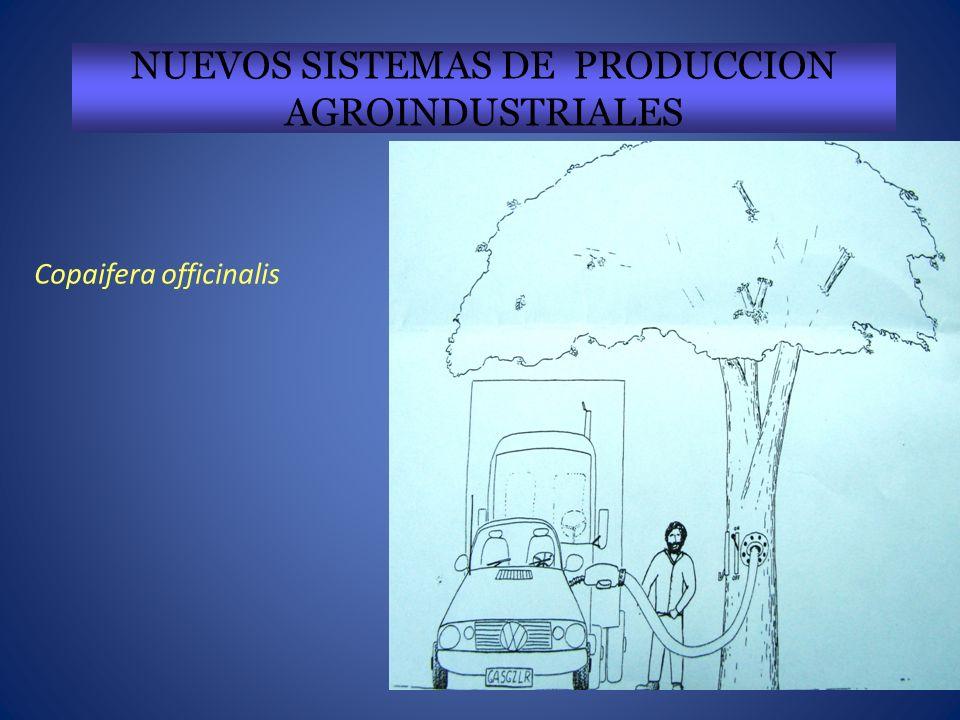 NUEVOS SISTEMAS DE PRODUCCION AGROINDUSTRIALES Copaifera officinalis