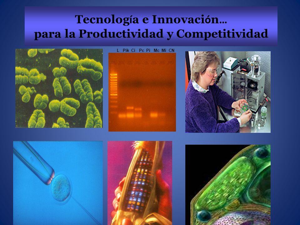 Tecnolog í a e Innovaci ó n … para la Productividad y Competitividad L Pik Ci Pc Pi Mc Mi CN