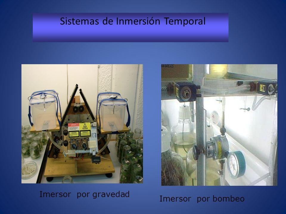 Sistemas de Inmersión Temporal Imersor por gravedad Imersor por bombeo
