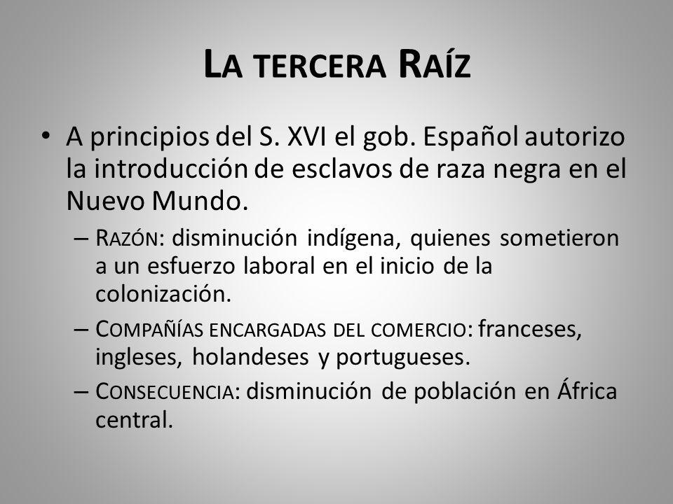 L A TERCERA R AÍZ A principios del S. XVI el gob. Español autorizo la introducción de esclavos de raza negra en el Nuevo Mundo. – R AZÓN : disminución