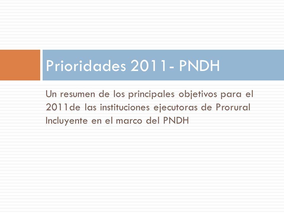 Un resumen de los principales objetivos para el 2011de las instituciones ejecutoras de Prorural Incluyente en el marco del PNDH Prioridades 2011- PNDH