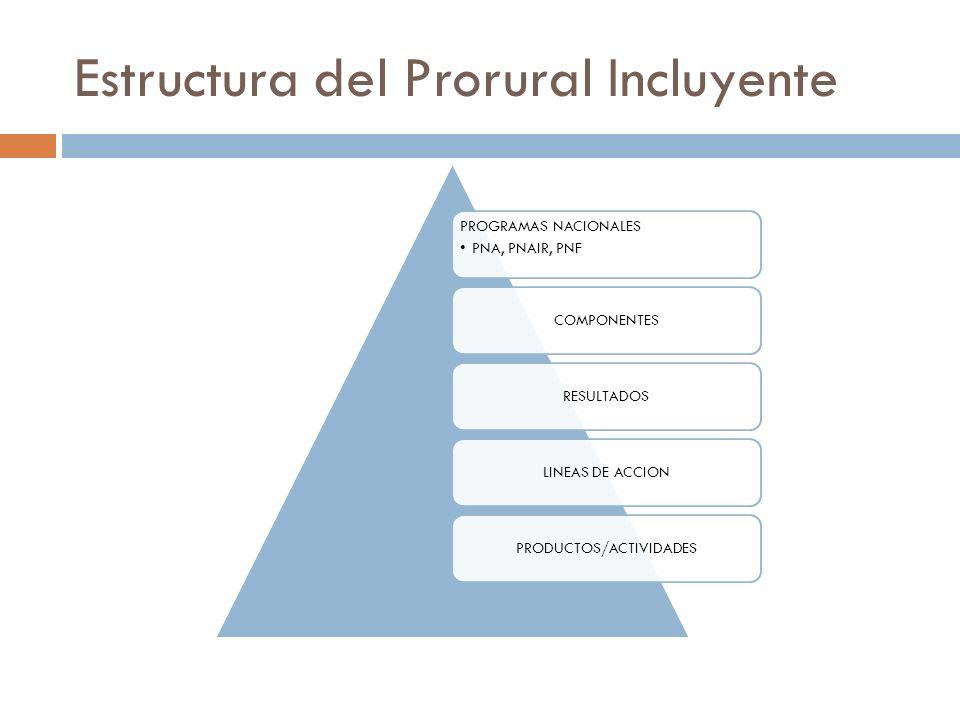 Estructura del Prorural Incluyente PROGRAMAS NACIONALES PNA, PNAIR, PNF COMPONENTESRESULTADOSLINEAS DE ACCIONPRODUCTOS/ACTIVIDADES