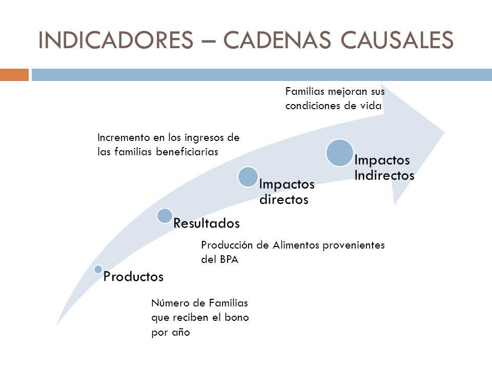 INDICADORES – CADENAS CAUSALES Productos Resultados Impactos directos Impactos Indirectos Número de Familias que reciben el bono por año Producción de