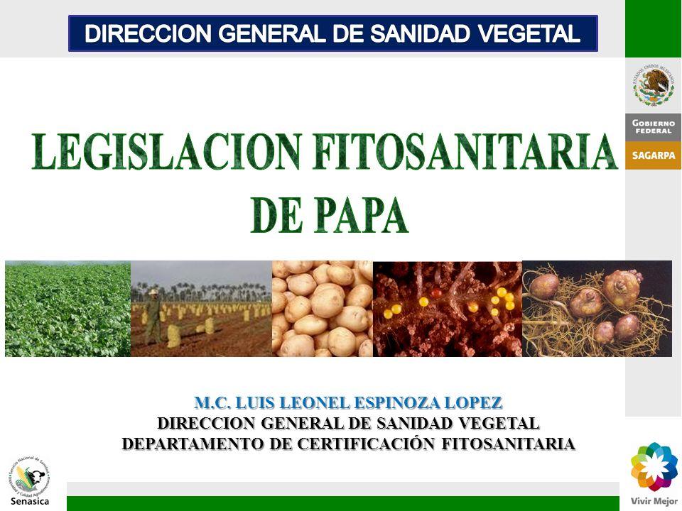 M.C. LUIS LEONEL ESPINOZA LOPEZ DIRECCION GENERAL DE SANIDAD VEGETAL DEPARTAMENTO DE CERTIFICACIÓN FITOSANITARIA