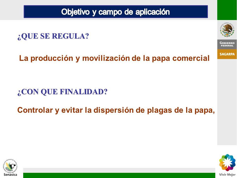 La producción y movilización de la papa comercial Controlar y evitar la dispersión de plagas de la papa, ¿CON QUE FINALIDAD? ¿QUE SE REGULA?