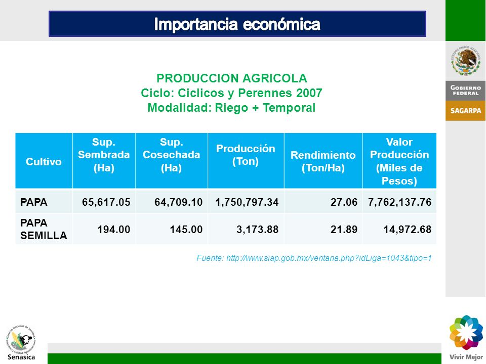 Cultivo Sup. Sembrada (Ha) Sup. Cosechada (Ha) Producción (Ton) Rendimiento (Ton/Ha) Valor Producción (Miles de Pesos) PAPA65,617.0564,709.101,750,797