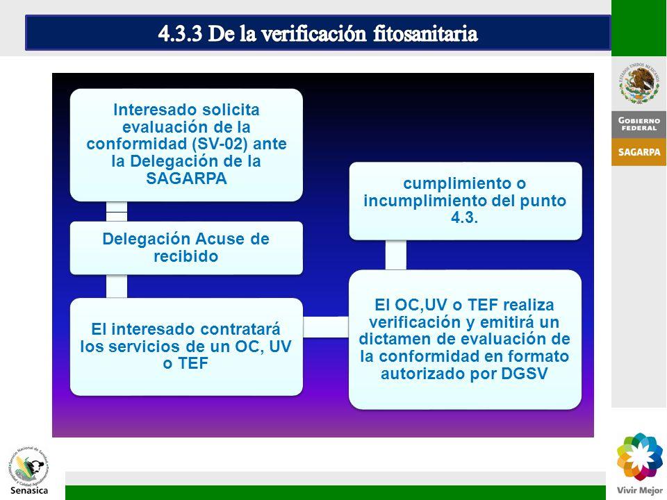 Interesado solicita evaluación de la conformidad (SV-02) ante la Delegación de la SAGARPA Delegación Acuse de recibido El interesado contratará los se