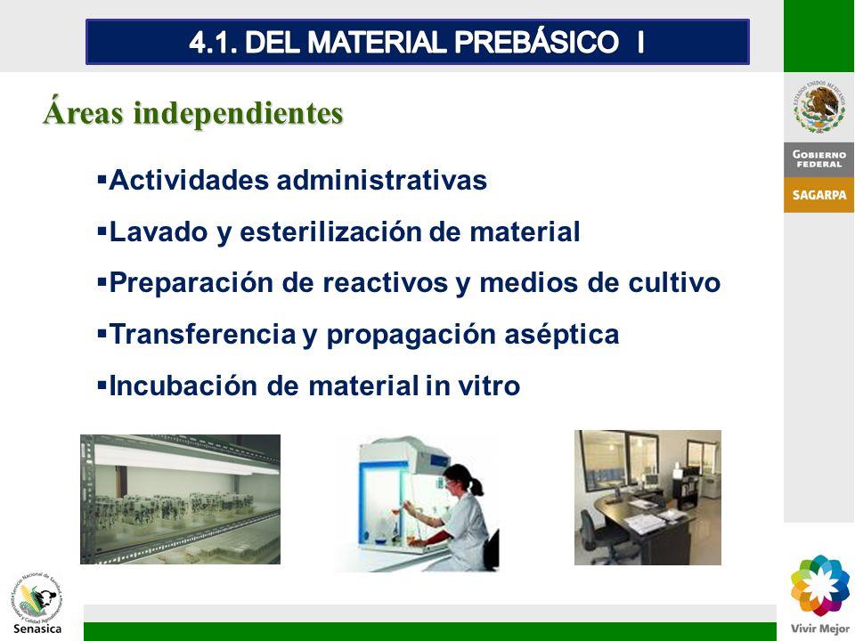 Áreas independientes Actividades administrativas Lavado y esterilización de material Preparación de reactivos y medios de cultivo Transferencia y prop