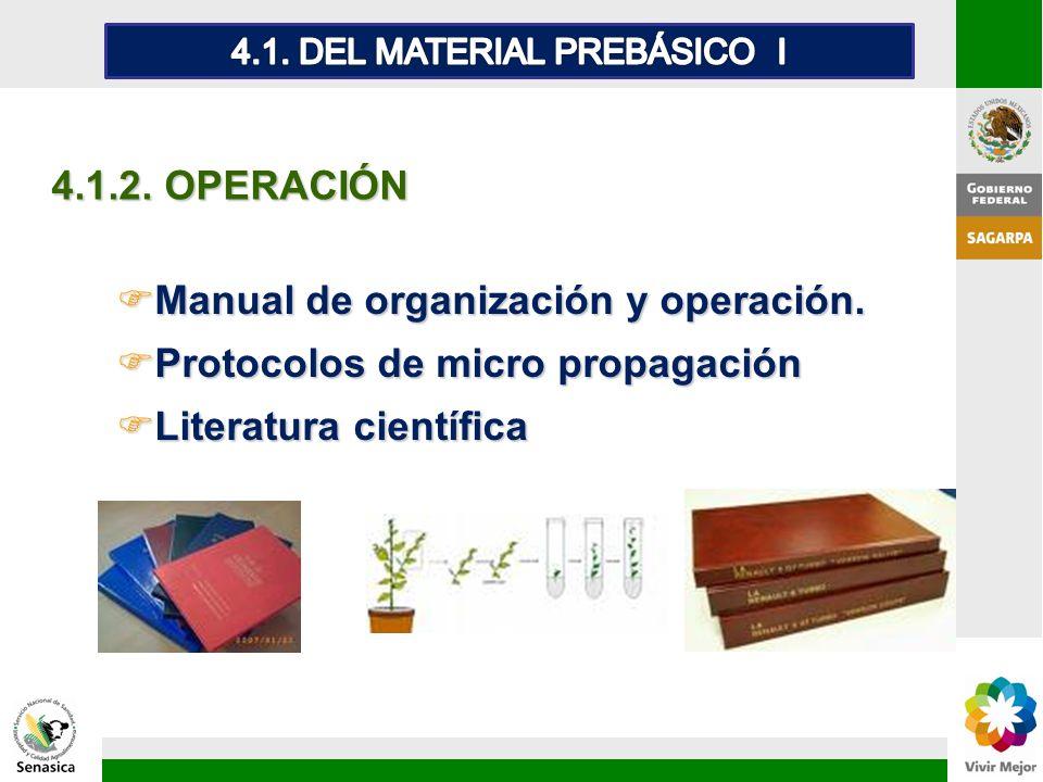 FManual de organización y operación. FProtocolos de micro propagación FLiteratura científica 4.1.2. OPERACIÓN