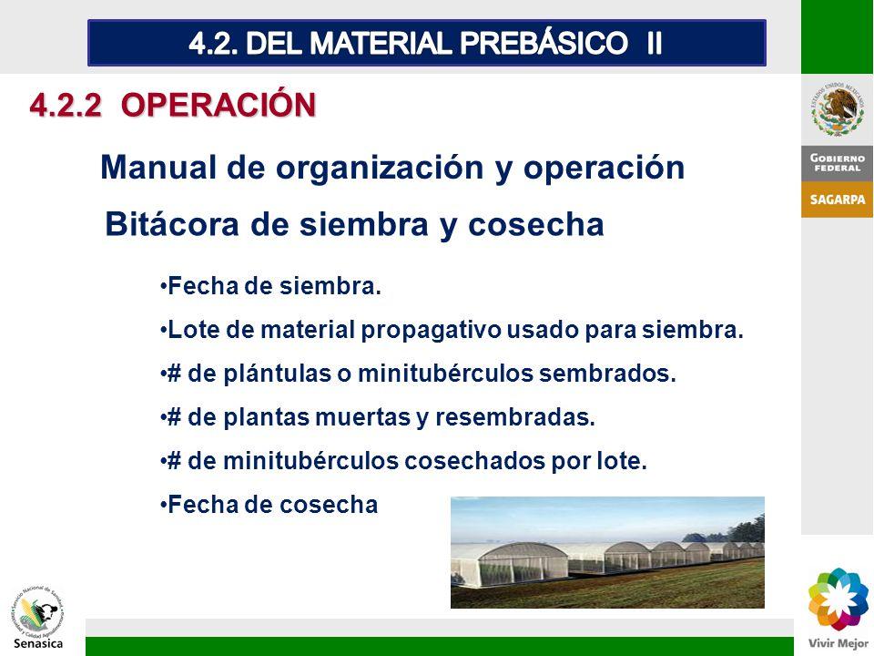 4.2.2 OPERACIÓN Bitácora de siembra y cosecha Manual de organización y operación Fecha de siembra. Lote de material propagativo usado para siembra. #