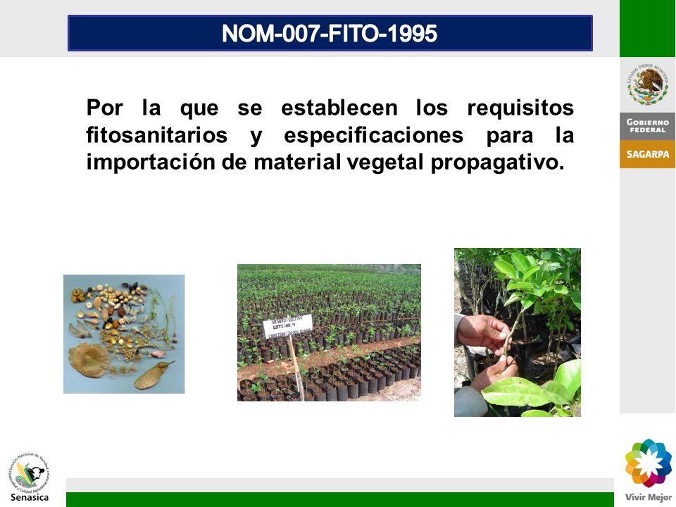 Por la que se establecen los requisitos fitosanitarios y especificaciones para la importación de material vegetal propagativo.