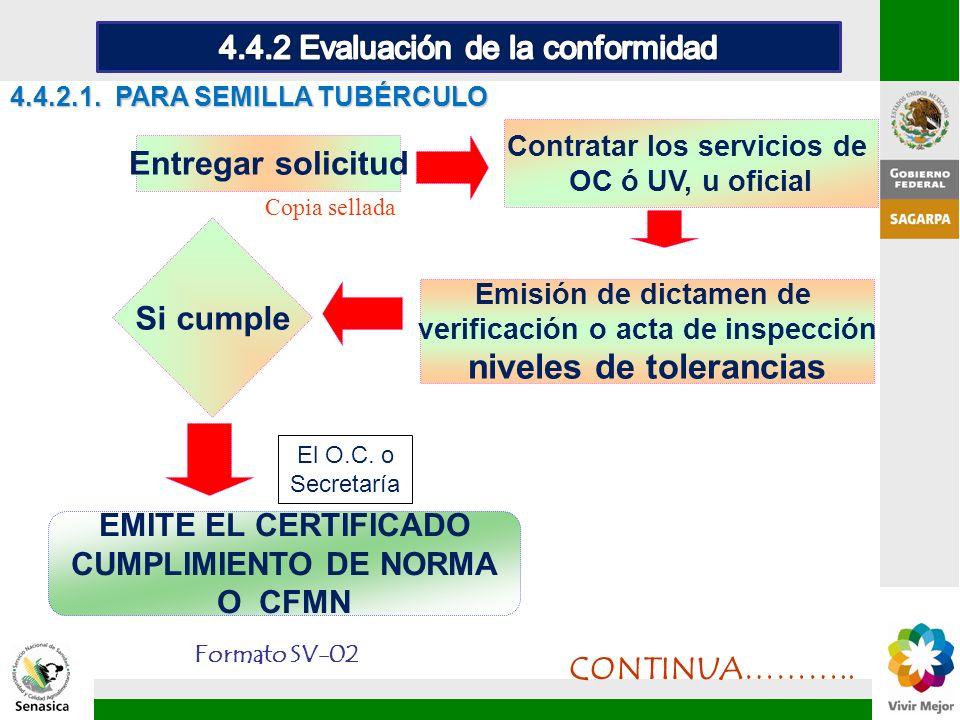 4.4.2.1. PARA SEMILLA TUBÉRCULO Entregar solicitud Contratar los servicios de OC ó UV, u oficial Emisión de dictamen de verificación o acta de inspecc