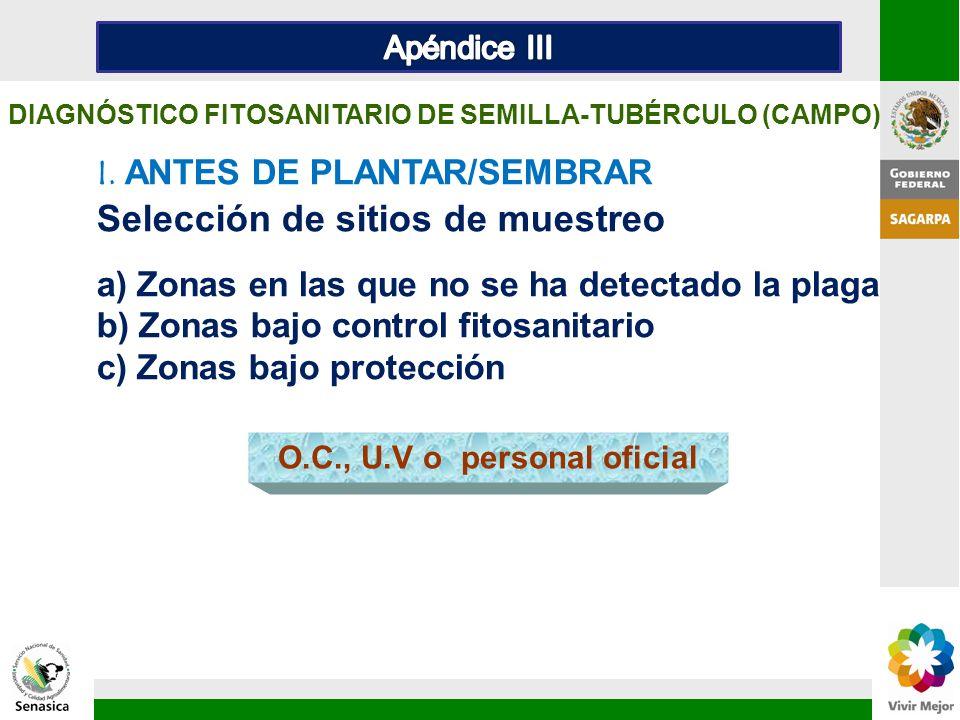 I. ANTES DE PLANTAR/SEMBRAR Selección de sitios de muestreo a) Zonas en las que no se ha detectado la plaga b) Zonas bajo control fitosanitario c) Zon