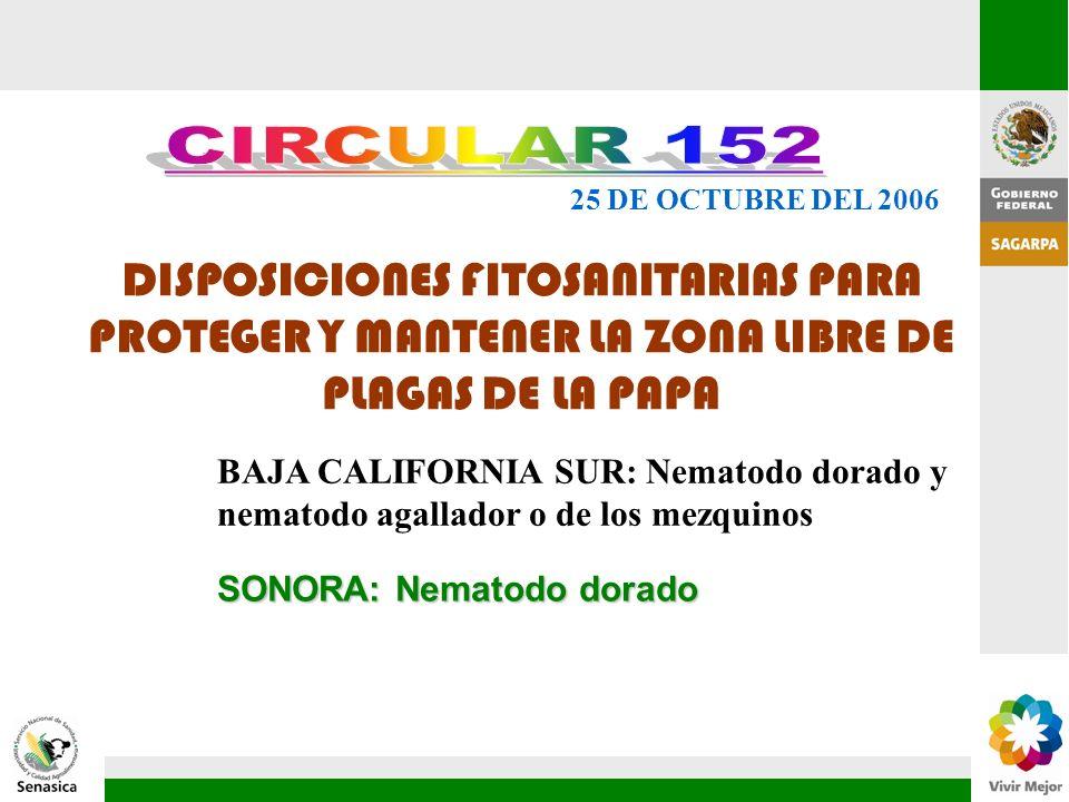 DISPOSICIONES FITOSANITARIAS PARA PROTEGER Y MANTENER LA ZONA LIBRE DE PLAGAS DE LA PAPA 25 DE OCTUBRE DEL 2006 SONORA: Nematodo dorado BAJA CALIFORNI