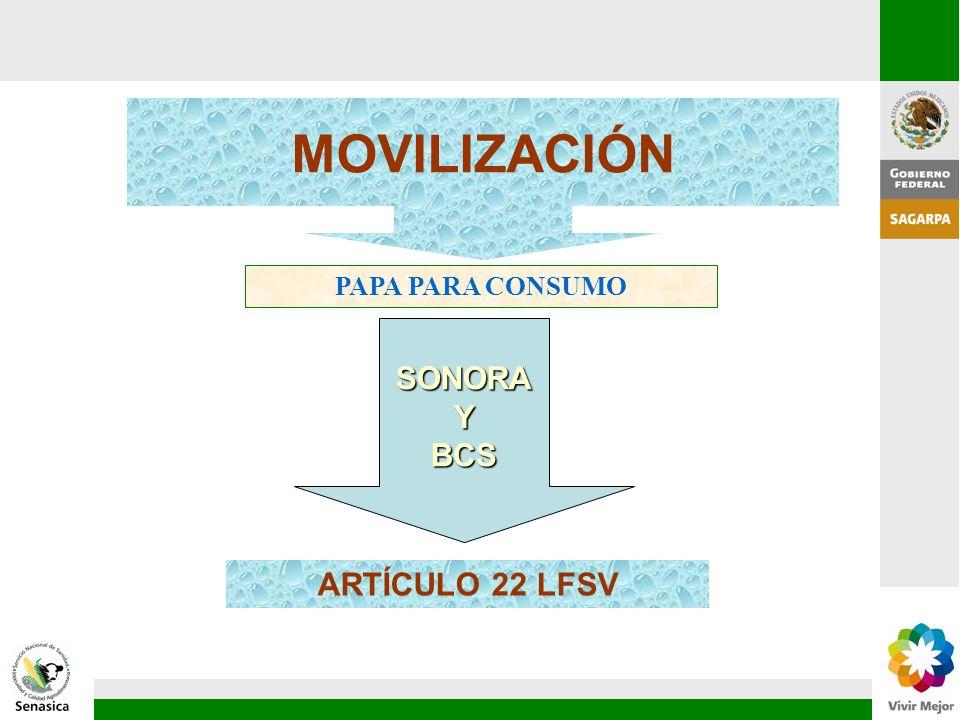 ARTÍCULO 22 LFSV MOVILIZACIÓN PAPA PARA CONSUMO SONORAYBCS