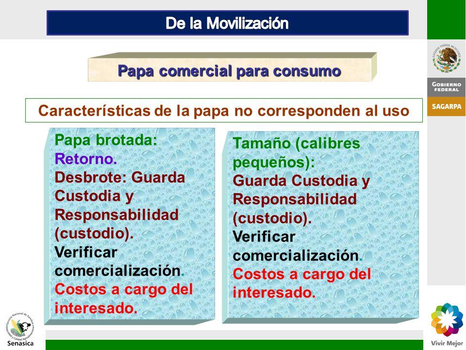 Tamaño (calibres pequeños): Guarda Custodia y Responsabilidad (custodio). Verificar comercialización. Costos a cargo del interesado. Papa comercial pa