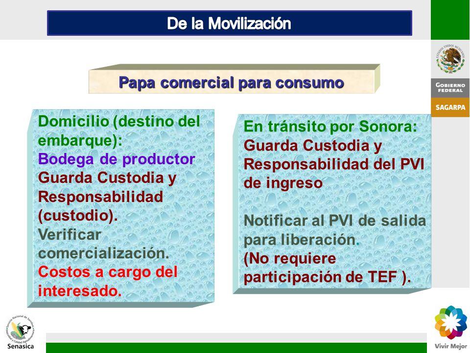 En tránsito por Sonora: Guarda Custodia y Responsabilidad del PVI de ingreso Notificar al PVI de salida para liberación. (No requiere participación de