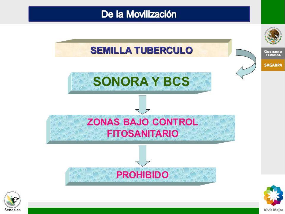 PROHIBIDO SONORA Y BCS SEMILLA TUBERCULO ZONAS BAJO CONTROL FITOSANITARIO