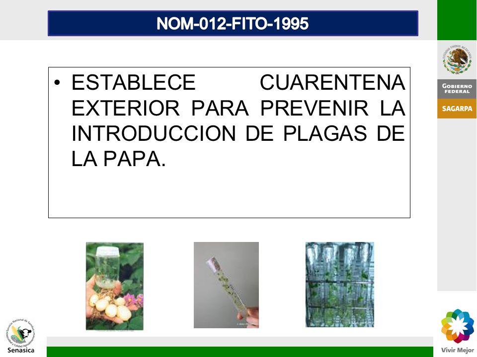 ESTABLECE CUARENTENA EXTERIOR PARA PREVENIR LA INTRODUCCION DE PLAGAS DE LA PAPA.