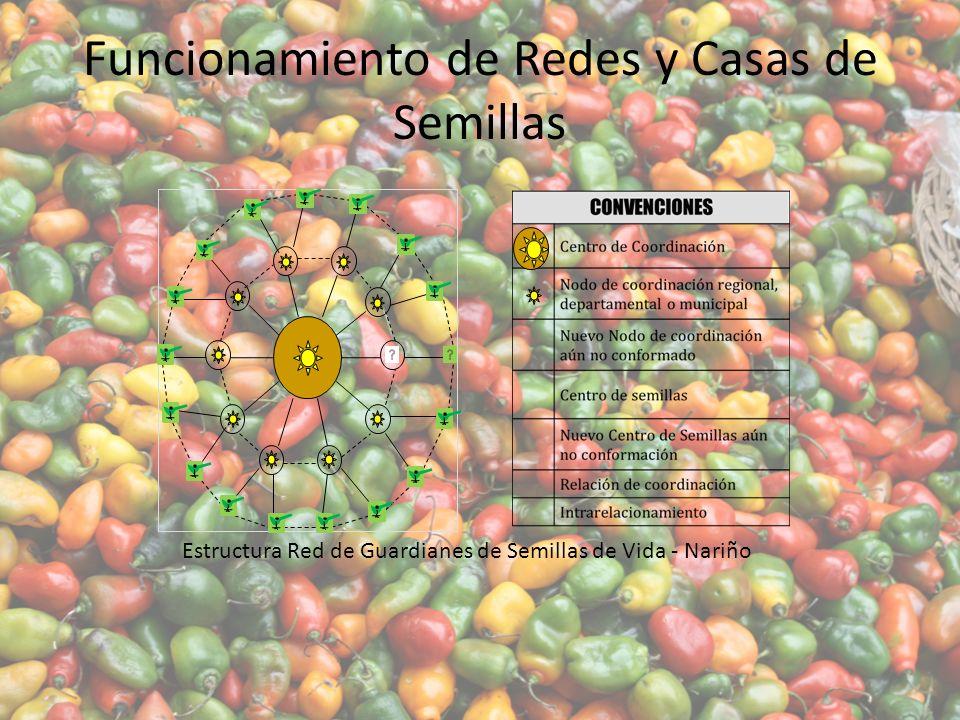 Funcionamiento de Redes y Casas de Semillas Estructura Red de Guardianes de Semillas de Vida - Nariño
