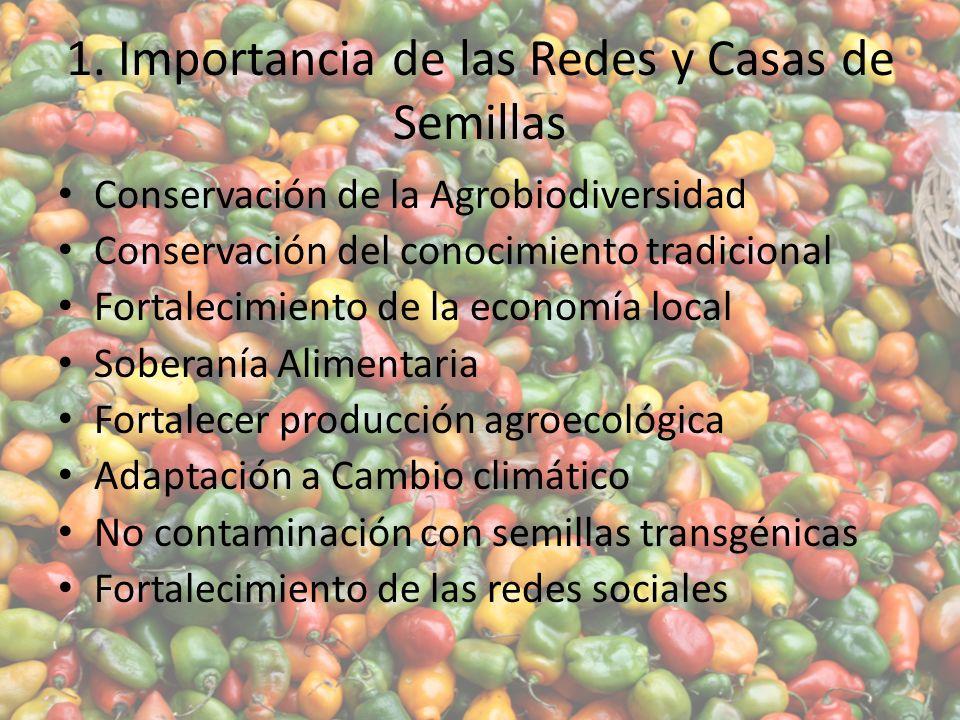 1. Importancia de las Redes y Casas de Semillas Conservación de la Agrobiodiversidad Conservación del conocimiento tradicional Fortalecimiento de la e