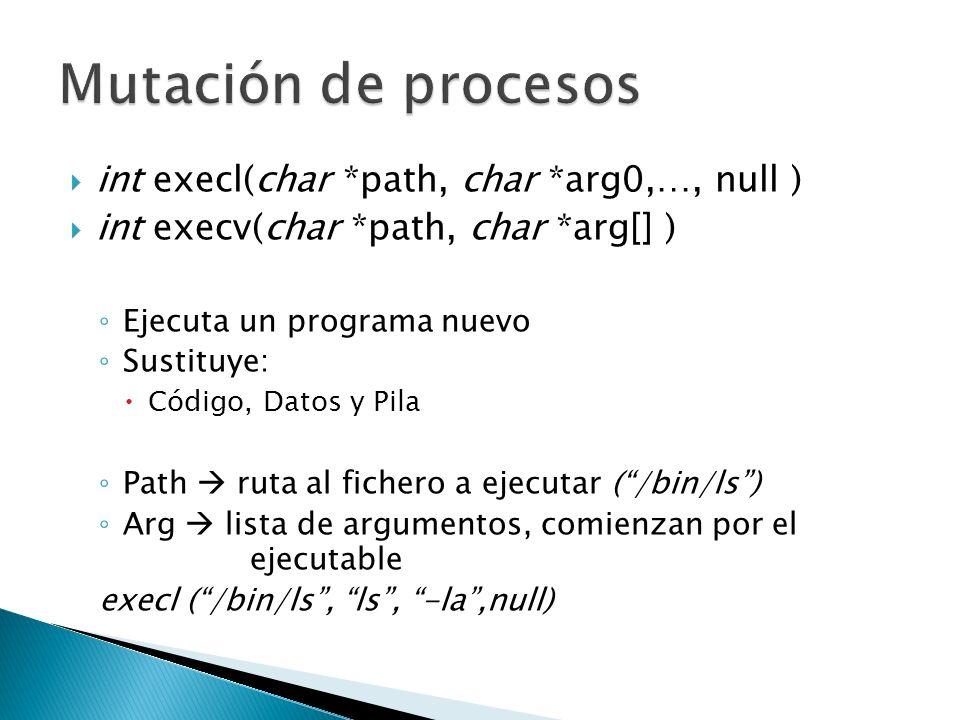 int execl(char *path, char *arg0,…, null ) int execv(char *path, char *arg[] ) Ejecuta un programa nuevo Sustituye: Código, Datos y Pila Path ruta al