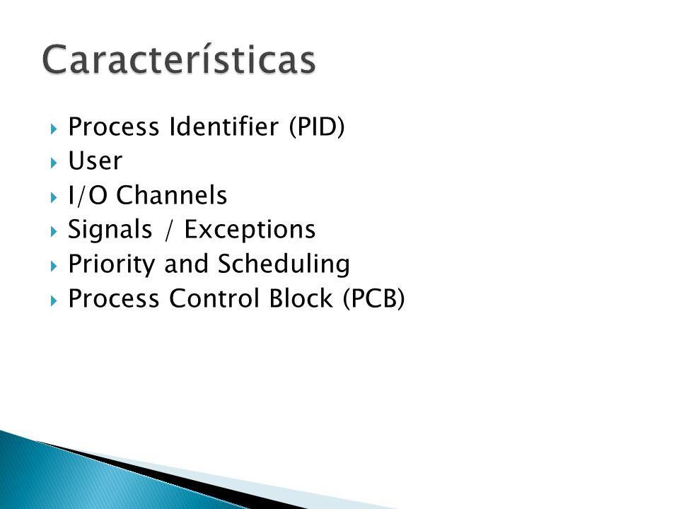 Se identifican mediante un PID (Process IDentifier) Único en el sistema Constante durante toda la vida del proceso Están asociados a un usuario Tendrá acceso a los recursos en función del usuario Se puede cambiar de usuario Dispone de canales para realizar la E/S Gestión de excepciones y eventos Tienen prioridades, usadas para planificar Esta información se almacena en el PCB (Process Control Block)