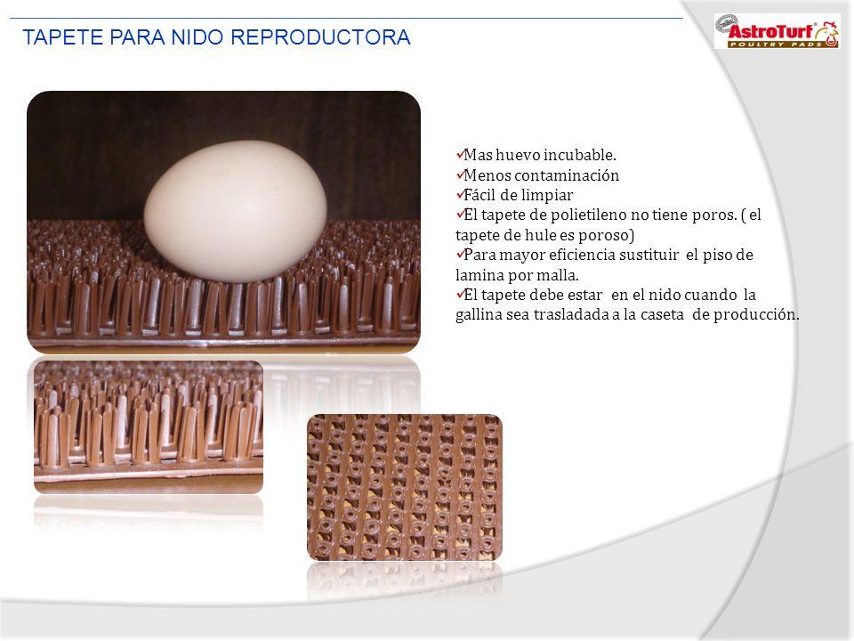 Mas huevo incubable. Menos contaminación Fácil de limpiar El tapete de polietileno no tiene poros. ( el tapete de hule es poroso) Para mayor eficienci