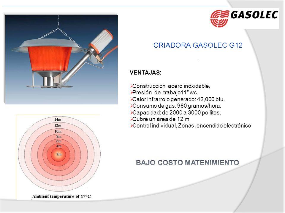 CRIADORA GASOLEC G12. VENTAJAS: Construcción acero inoxidable. Presión de trabajo11 wc.. Calor infrarrojo generado: 42,000 btu. Consumo de gas: 960 gr