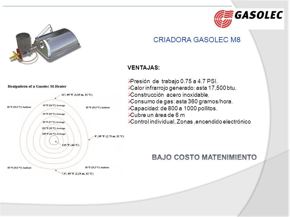 CRIADORA GASOLEC M8 VENTAJAS: Presión de trabajo 0.75 a 4.7 PSI. Calor infrarrojo generado: asta 17,500 btu. Construcción acero inoxidable. Consumo de